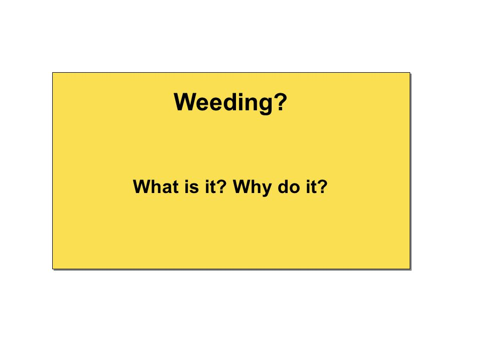 What is it? Why do it? Weeding?