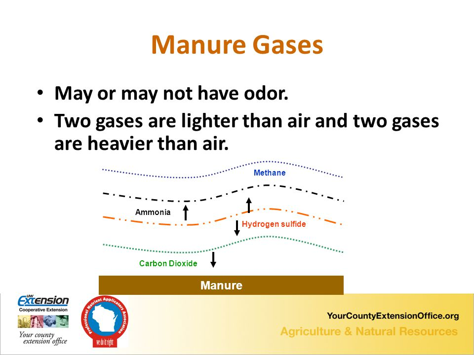 Manure Gases May or may not have odor.