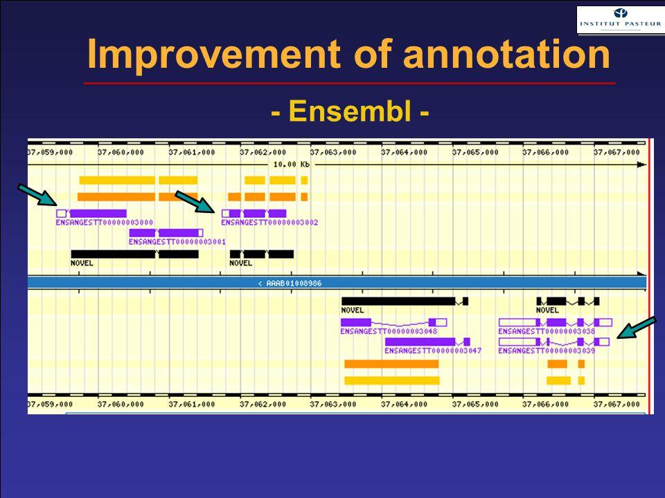 Improvement of annotation - Ensembl -