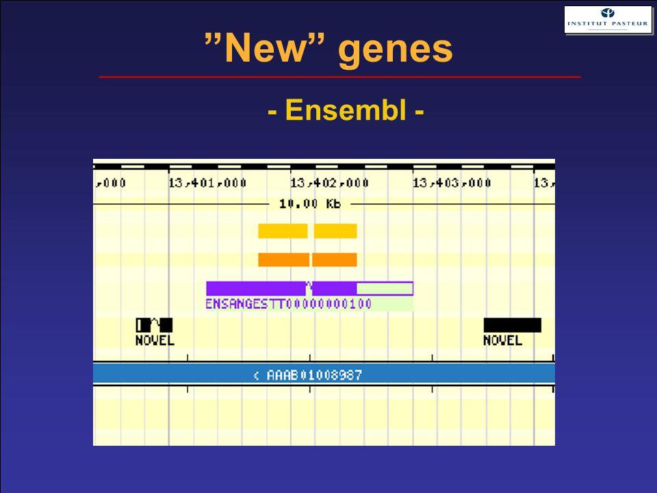"""""""New"""" genes - Ensembl -"""