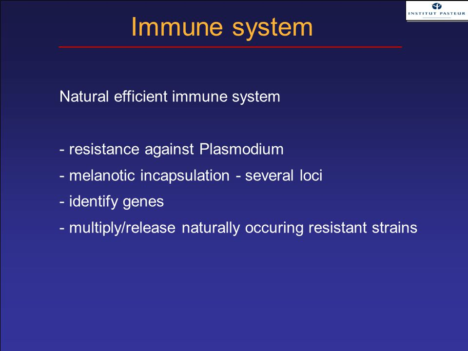 Natural efficient immune system - resistance against Plasmodium - melanotic incapsulation - several loci - identify genes - multiply/release naturally