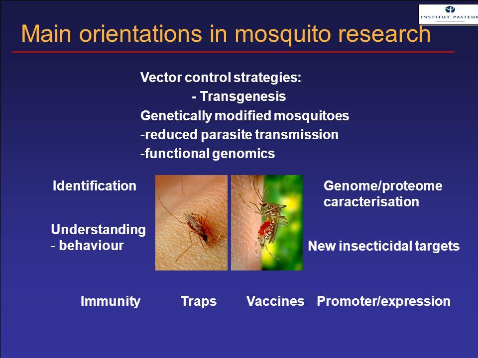 Traps Identification Understanding - behaviour Genome/proteome caracterisation Promoter/expression Vector control strategies: - Transgenesis Genetical