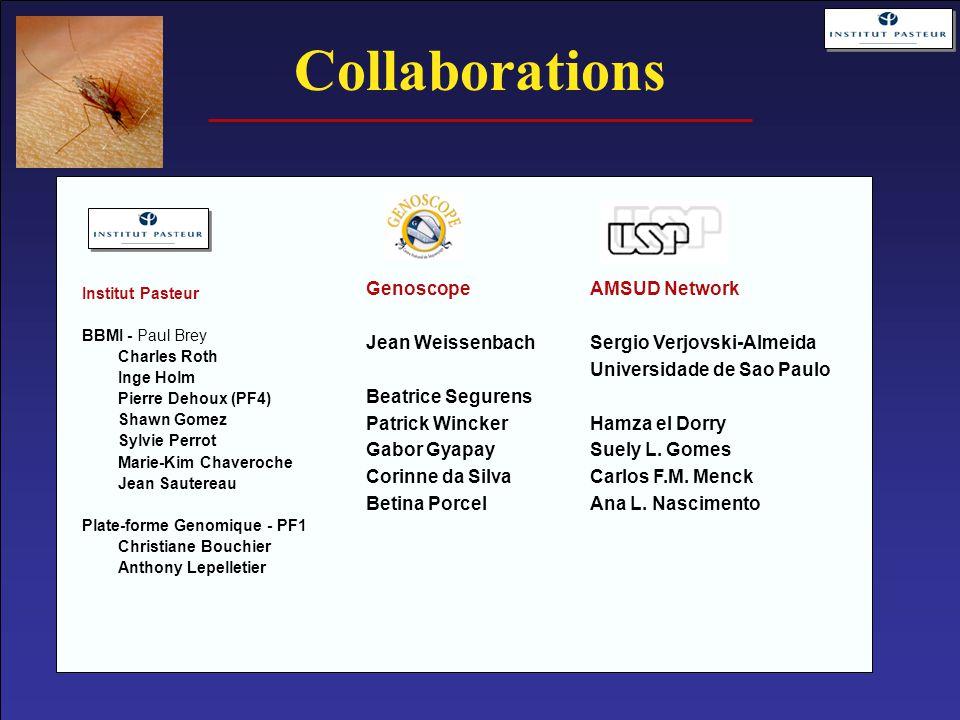 Collaborations Institut Pasteur BBMI - Paul Brey Charles Roth Inge Holm Pierre Dehoux (PF4) Shawn Gomez Sylvie Perrot Marie-Kim Chaveroche Jean Sauter