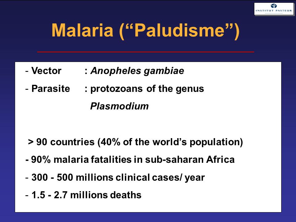 Malaria ( Paludisme ) - Vector: Anopheles gambiae - Parasite: protozoans of the genus Plasmodium > 90 countries (40% of the world's population) - 90% malaria fatalities in sub-saharan Africa - 300 - 500 millions clinical cases/ year - 1.5 - 2.7 millions deaths