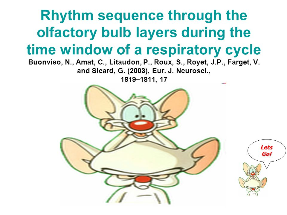 Rhythm sequence through the olfactory bulb layers during the time window of a respiratory cycle Buonviso, N., Amat, C., Litaudon, P., Roux, S., Royet, J.P., Farget, V.