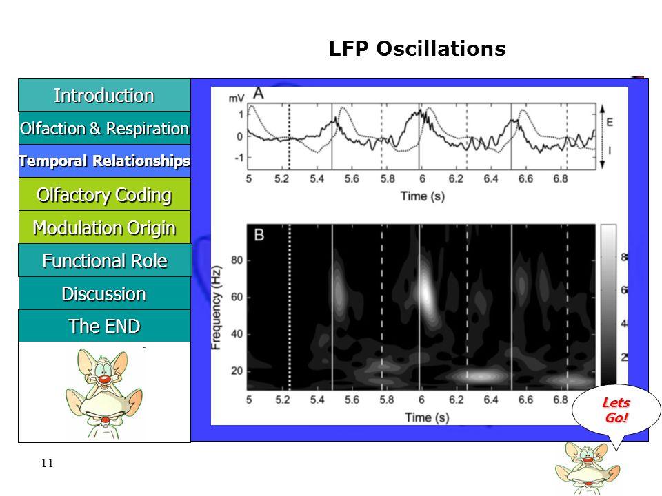 11 LFP Oscillations LLLL eeee tttt ssss GGGG oooo !!!.
