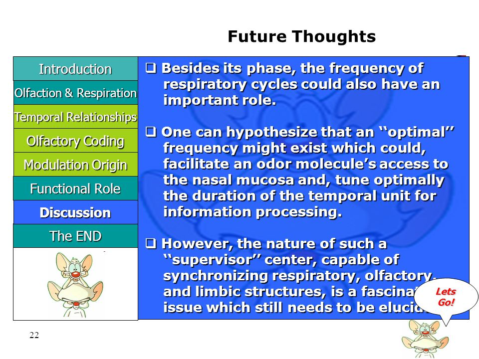 22 Future Thoughts  Besides its phase, the frequency of respiratory cycles could also have an respiratory cycles could also have an important role.