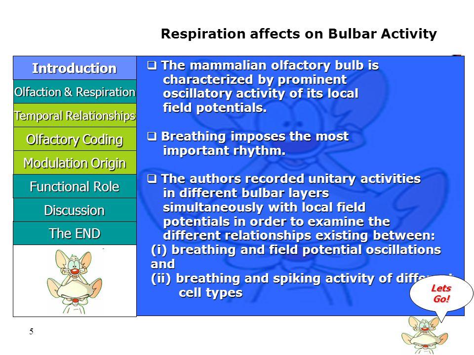 16 Phase Relationships relative to Respiration LLLL eeee tttt ssss GGGG oooo !!!.