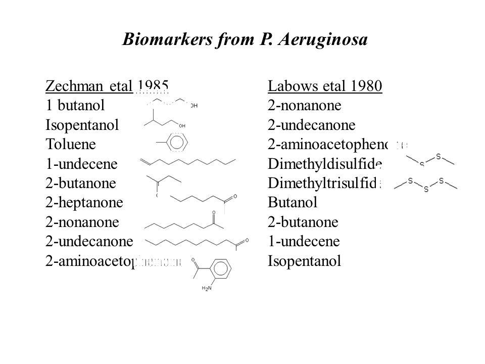 Zechman etal 1985 1 butanol Isopentanol Toluene 1-undecene 2-butanone 2-heptanone 2-nonanone 2-undecanone 2-aminoacetophenone Labows etal 1980 2-nonanone 2-undecanone 2-aminoacetophenone Dimethyldisulfide Dimethyltrisulfide Butanol 2-butanone 1-undecene Isopentanol Biomarkers from P.