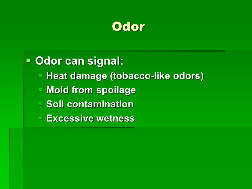 Odor  Odor can signal:  Heat damage (tobacco-like odors)  Mold from spoilage  Soil contamination  Excessive wetness