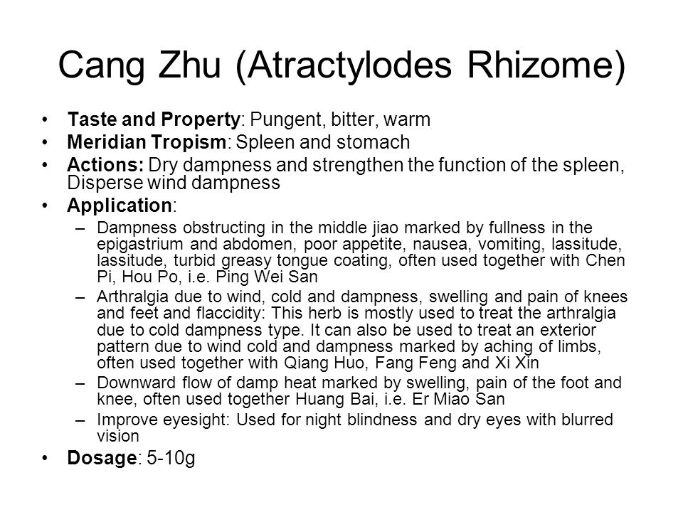 Cang Zhu (Atractylodes Rhizome) Taste and Property: Pungent, bitter, warm Meridian Tropism: Spleen and stomach Actions: Dry dampness and strengthen the function of the spleen, Disperse wind dampness Application: –Dampness obstructing in the middle jiao marked by fullness in the epigastrium and abdomen, poor appetite, nausea, vomiting, lassitude, lassitude, turbid greasy tongue coating, often used together with Chen Pi, Hou Po, i.e.