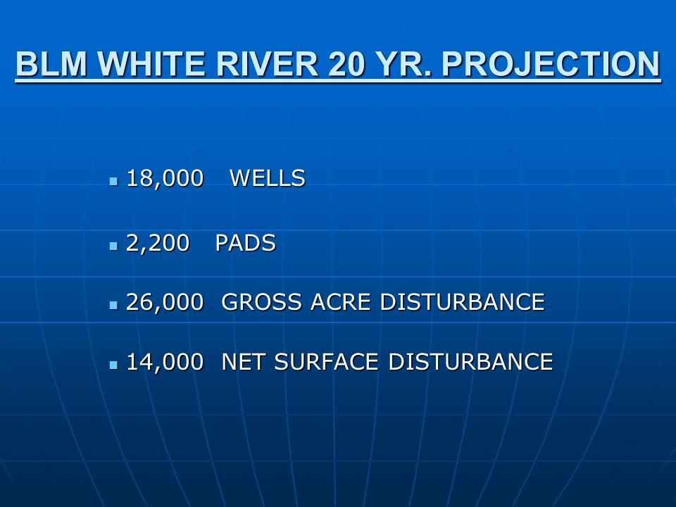 BLM WHITE RIVER 20 YR.