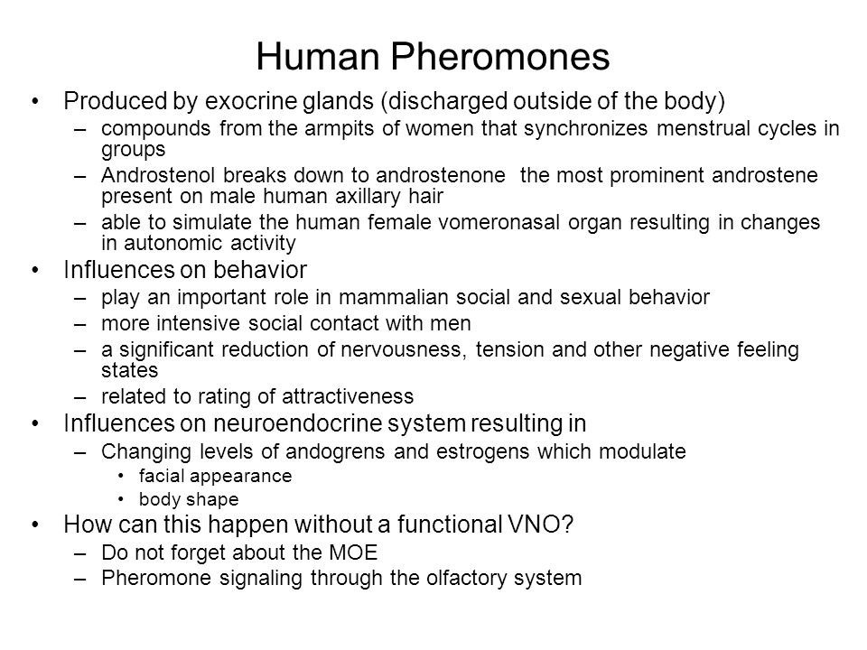 Human Pheromones Produced by exocrine glands (discharged outside of the body) –compounds from the armpits of women that synchronizes menstrual cycles in groups –Androstenol breaks down to androstenone the most prominent androstene present on male human axillary hair –able to simulate the human female vomeronasal organ resulting in changes in autonomic activity Influences on behavior –play an important role in mammalian social and sexual behavior –more intensive social contact with men –a significant reduction of nervousness, tension and other negative feeling states –related to rating of attractiveness Influences on neuroendocrine system resulting in –Changing levels of andogrens and estrogens which modulate facial appearance body shape How can this happen without a functional VNO.