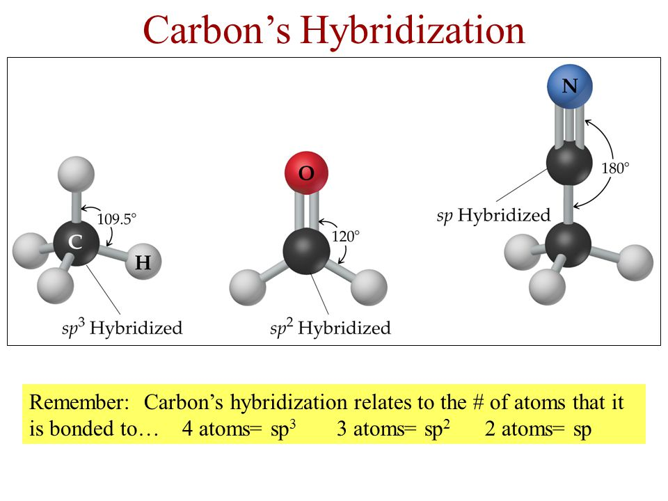 The Stabilities of Organic Molecules Stability: Carbon also forms strong bonds with itself.