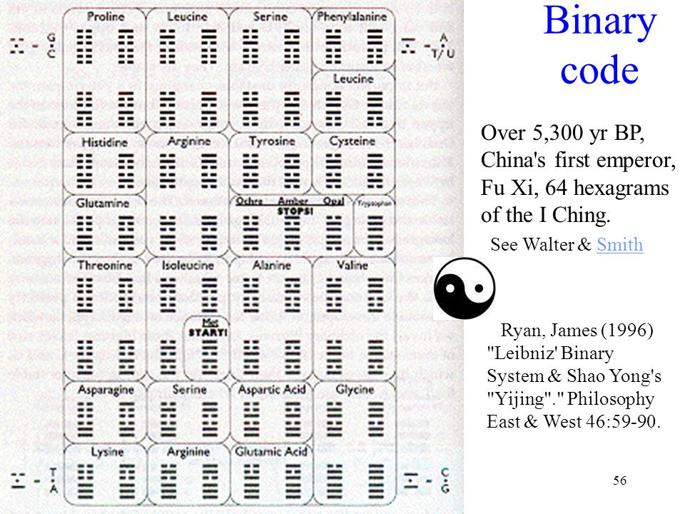 56 Binary code Ryan, James (1996) Leibniz Binary System & Shao Yong s Yijing . Philosophy East & West 46:59-90.