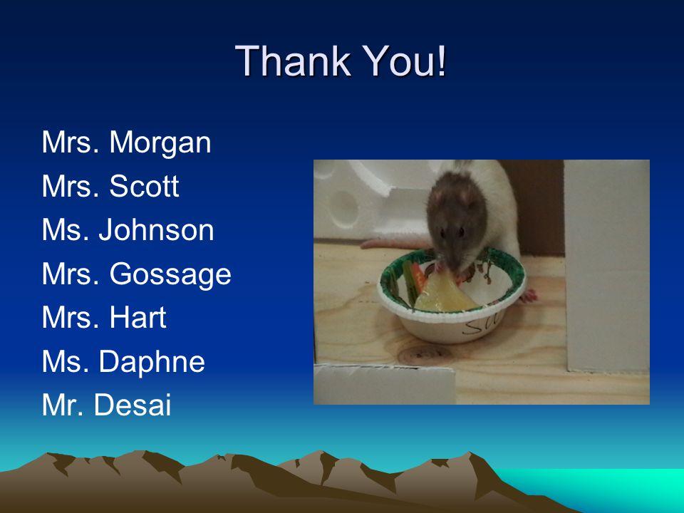 Thank You! Mrs. Morgan Mrs. Scott Ms. Johnson Mrs. Gossage Mrs. Hart Ms. Daphne Mr. Desai