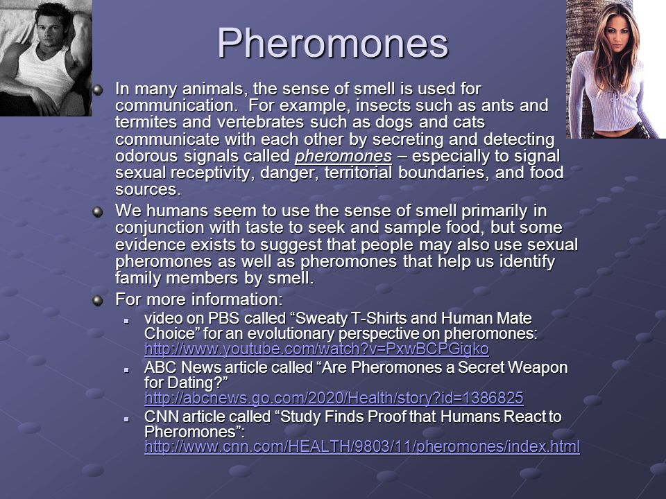 Pheromones In many animals, the sense of smell is used for communication.