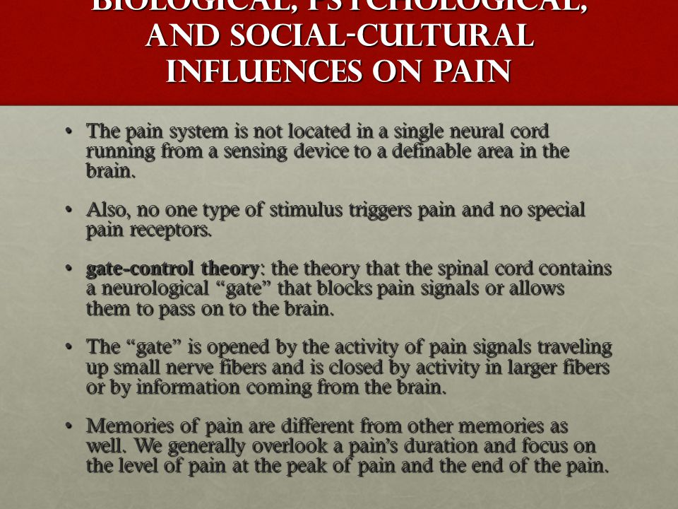 Biological, Psychological, and Social-Cultural Influences on Pain The pain system is not located in a single neural cord running from a sensing device to a definable area in the brain.The pain system is not located in a single neural cord running from a sensing device to a definable area in the brain.