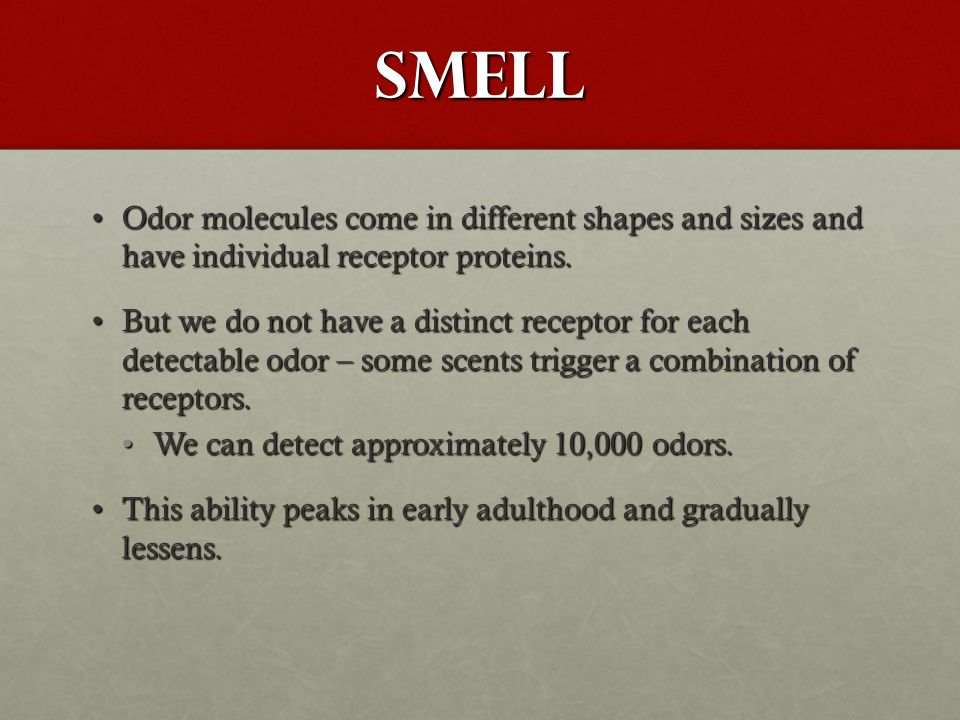 Smell Odor molecules come in different shapes and sizes and have individual receptor proteins.Odor molecules come in different shapes and sizes and ha