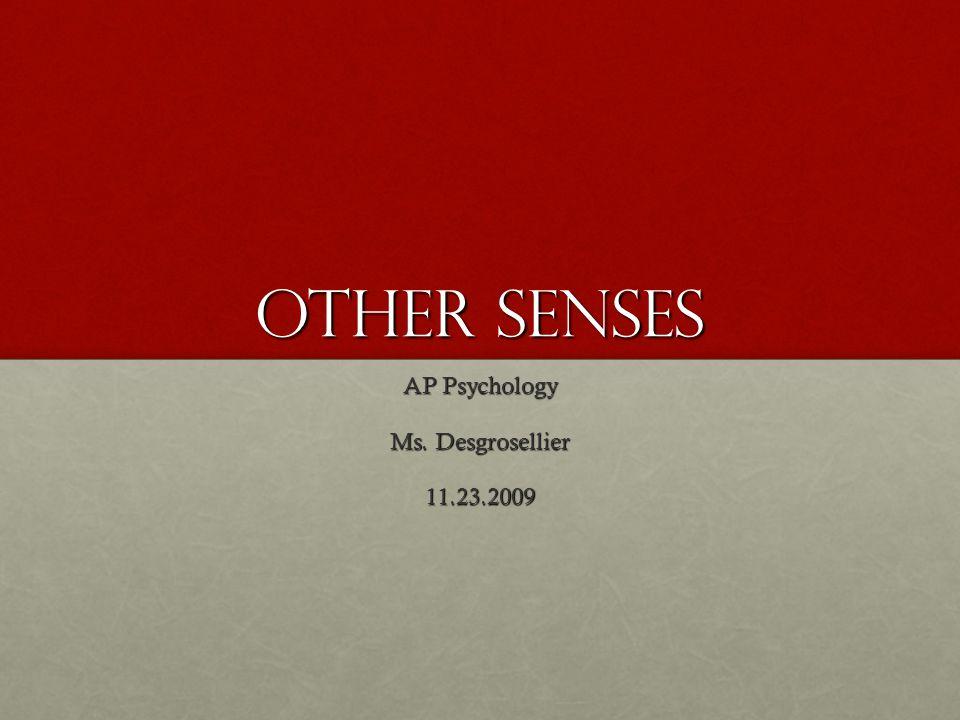 Other Senses AP Psychology Ms. Desgrosellier 11.23.2009