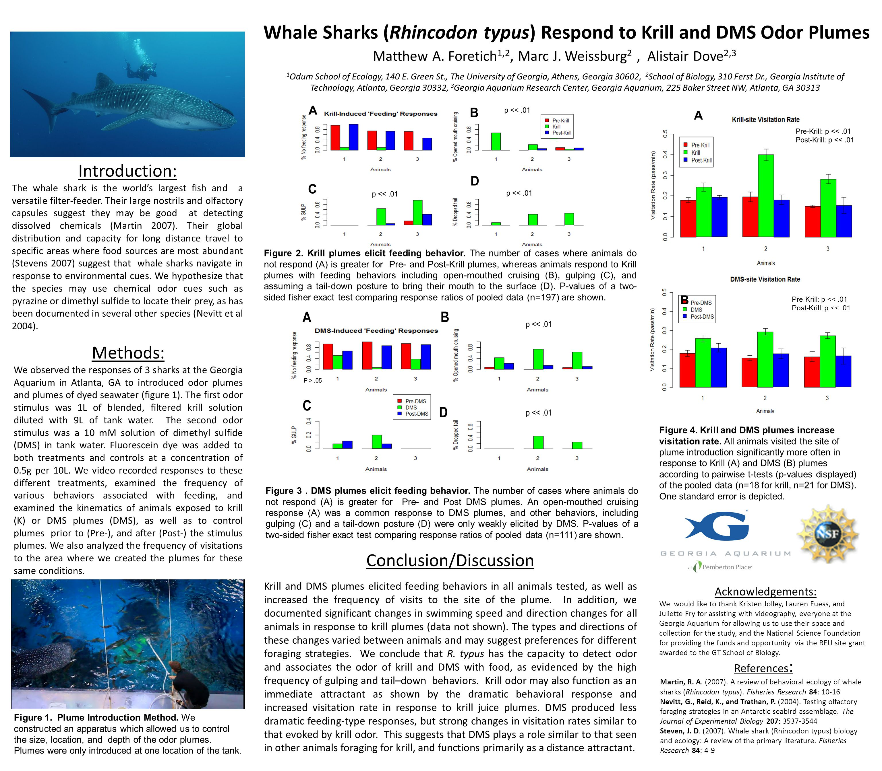 A Whale Sharks (Rhincodon typus) Respond to Krill and DMS Odor Plumes Matthew A.