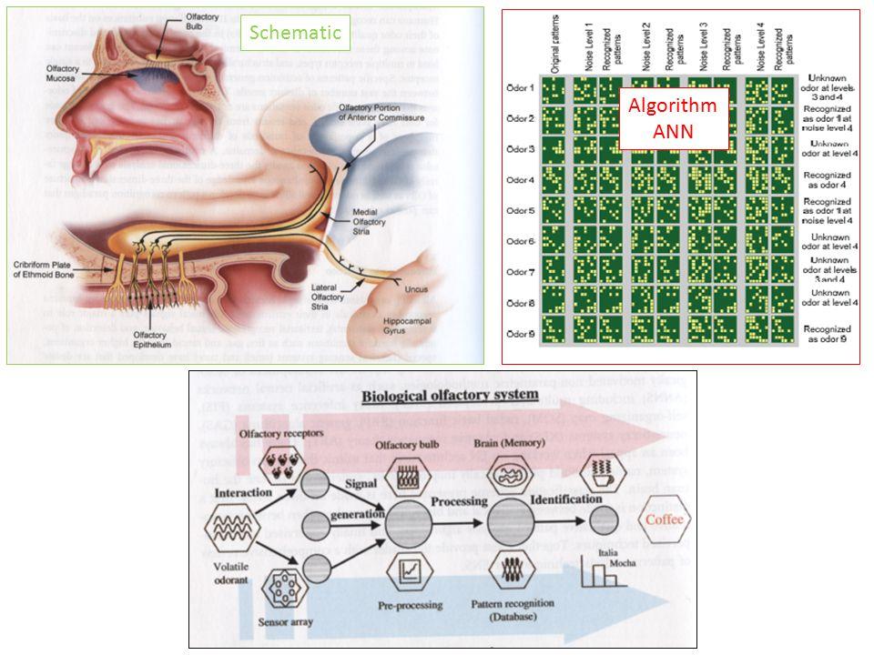 Odors ANN (Artificial Neural Network)