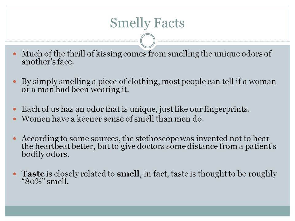 A dog's nose The wet snout catches and dissolves odor molecules.