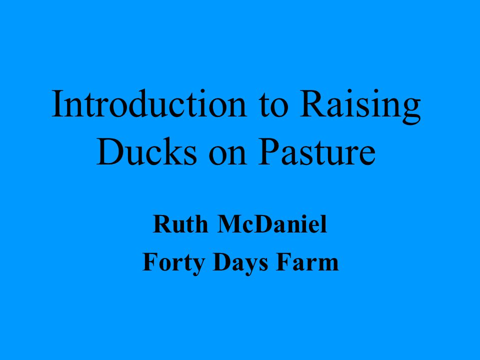 Why Ducks Control of aquatic weeds Ease of containment Eggs and meat Pest control Manure provides nutrients for garden areas
