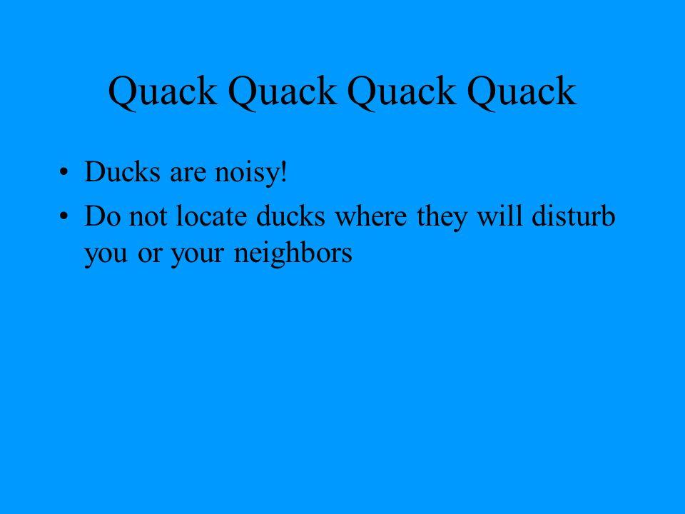 Resource List Storey's Guide to Raising Ducks by David Holderread