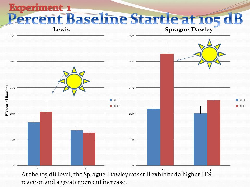 At the 105 dB level, the Sprague-Dawley rats still exhibited a higher LES reaction and a greater percent increase.