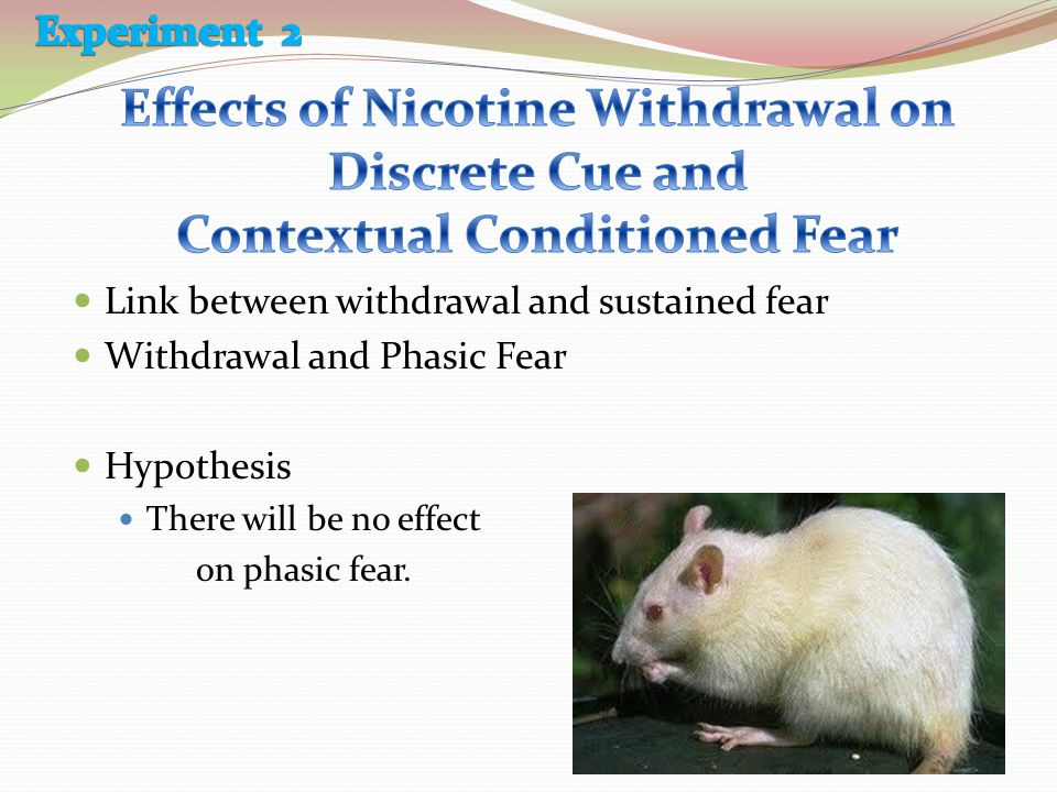 Link between withdrawal and sustained fear Withdrawal and Phasic Fear Hypothesis There will be no effect on phasic fear.