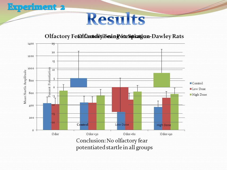 Conclusion: No olfactory fear potentiated startle in all groups