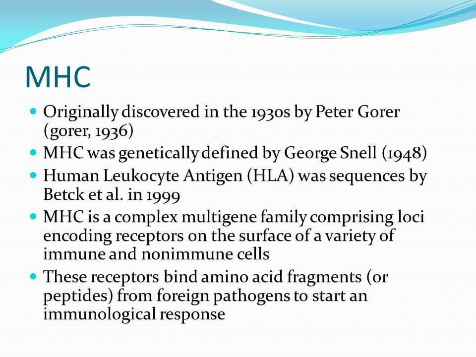 Chemical Investigations of MHC Odourtype in Mice MHC-regulated metabolic odour signal must have a background-independent component GC/MS experiments on 3 MHC-congenic mice derived from different background strains 36 out of 55 peaks from urine were found to be present in all three strains Background genes, MHC genes and their interaction regulate the urinary volatile profiles SPME GC/MS on mice (Kwak 2009)