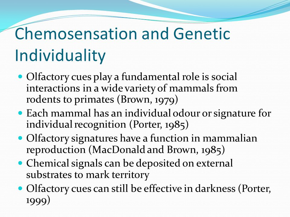 Chemosensation and Genetic Individuality Olfactory cues play a fundamental role is social interactions in a wide variety of mammals from rodents to pr