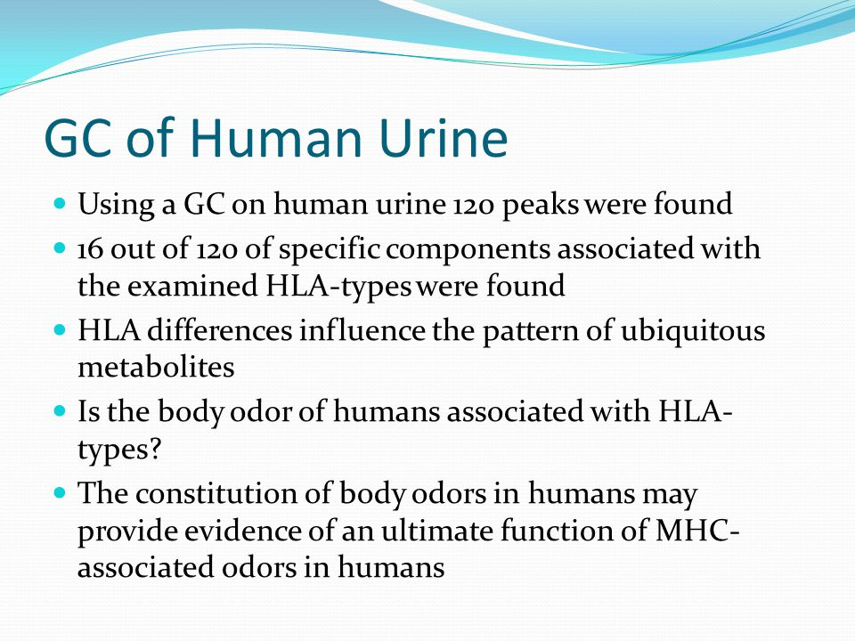 GC of Human Urine Using a GC on human urine 120 peaks were found 16 out of 120 of specific components associated with the examined HLA-types were foun