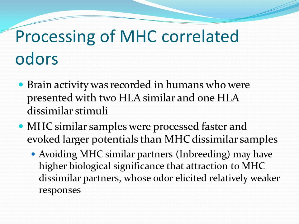 Processing of MHC correlated odors Brain activity was recorded in humans who were presented with two HLA similar and one HLA dissimilar stimuli MHC si