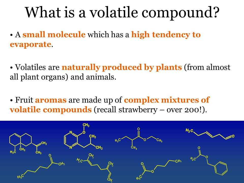 What is a volatile compound. A small molecule which has a high tendency to evaporate.