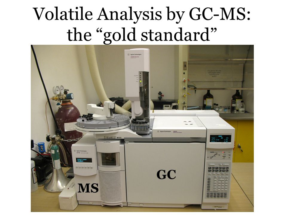 Volatile Analysis by GC-MS: the gold standard GC MS