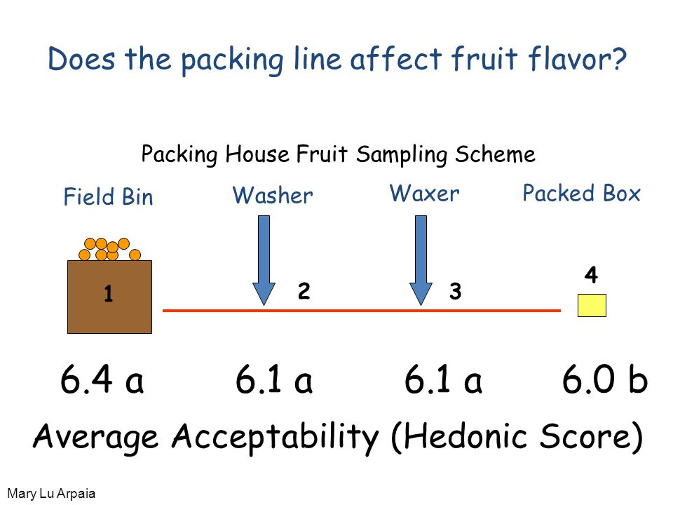 Field Bin Washer WaxerPacked Box 1 23 4 Packing House Fruit Sampling Scheme Does the packing line affect fruit flavor.