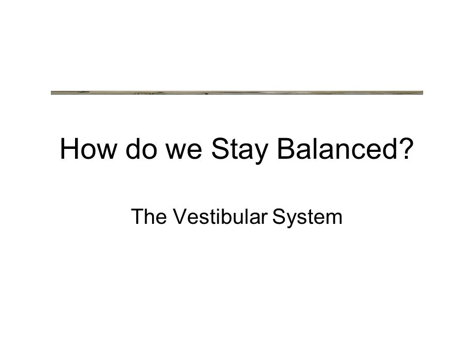 How do we Stay Balanced The Vestibular System