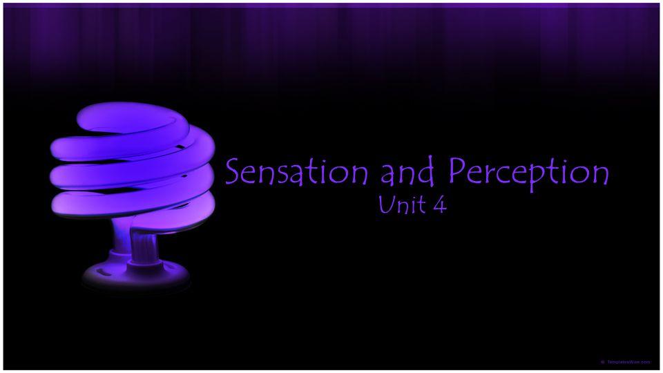 Sensation and Perception Unit 4