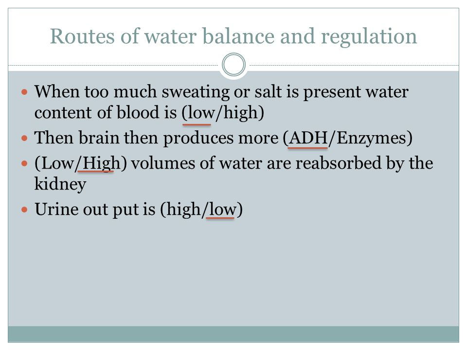 Routes of water balance and regulation When too much sweating or salt is present water content of blood is (low/high) Then brain then produces more (A