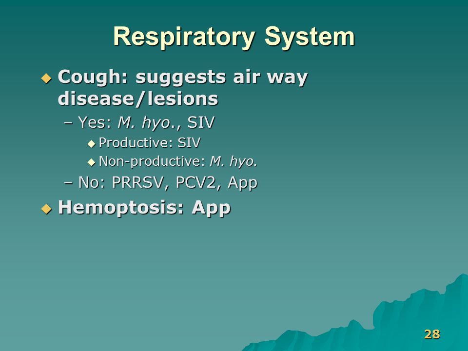 28 Respiratory System  Cough: suggests air way disease/lesions –Yes: M. hyo., SIV  Productive: SIV  Non-productive: M. hyo. –No: PRRSV, PCV2, App 