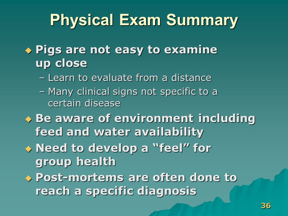 36 Physical Exam Summary  Pigs are not easy to examine up close –Learn to evaluate from a distance –Many clinical signs not specific to a certain dis