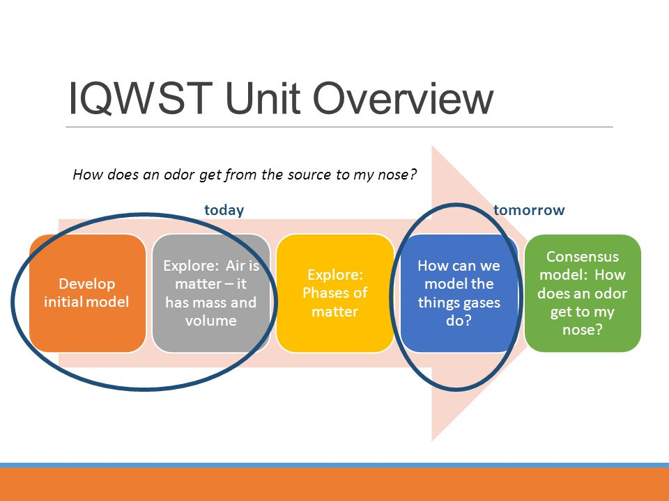IQWST Unit Overview How does an odor get from the source to my nose.