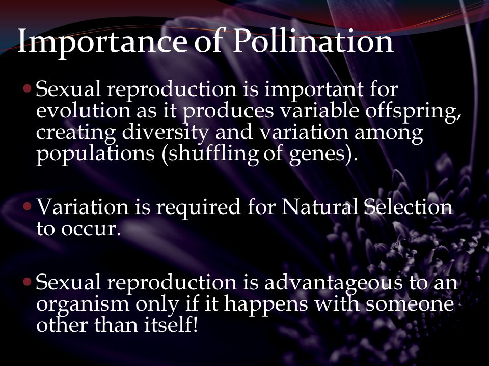 Sexual Reproduction In animals it's easy because you have separate male and female individuals.