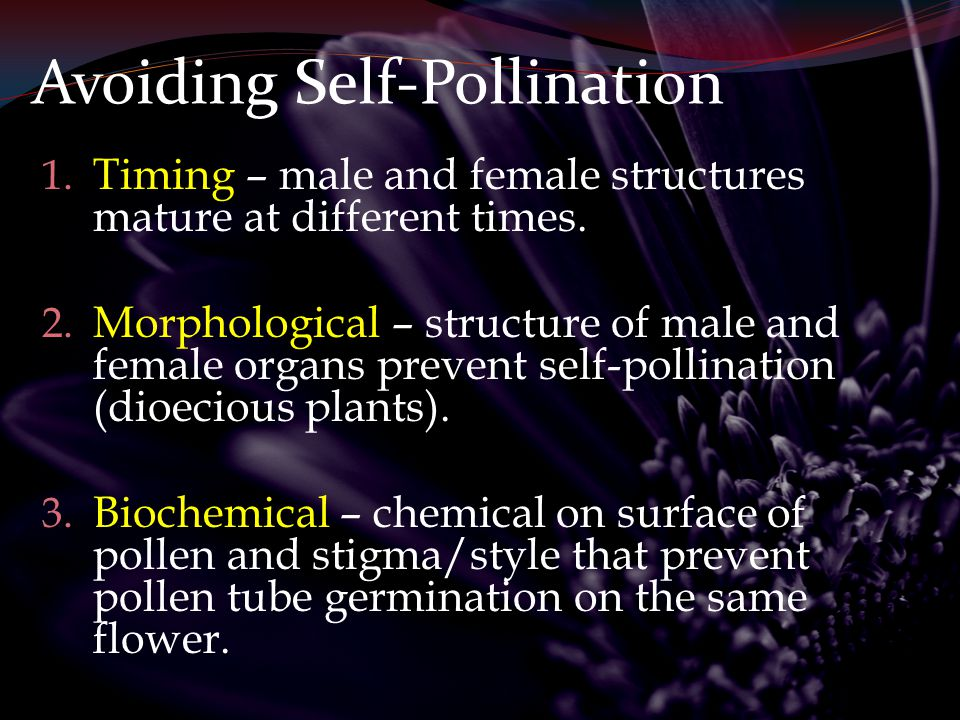 Methods of Pollination Plants use one of two methods for pollination: 1.