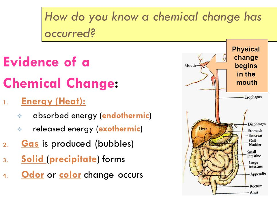 Changes of Matter Chemical Changes:  A change that does produce a new substance.