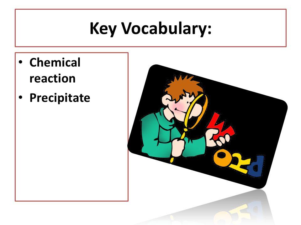 Key Vocabulary: Chemical reaction Precipitate