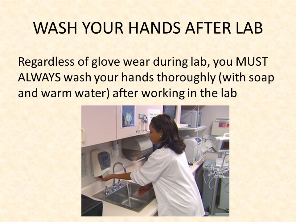 WASH YOUR HANDS AFTER LAB Regardless of glove wear during lab, you MUST ALWAYS wash your hands thoroughly (with soap and warm water) after working in the lab